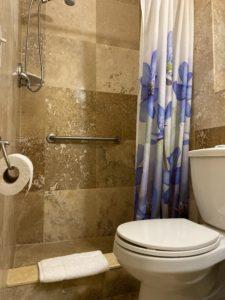 White Horse Motel-bathroom/shower with grab-bar